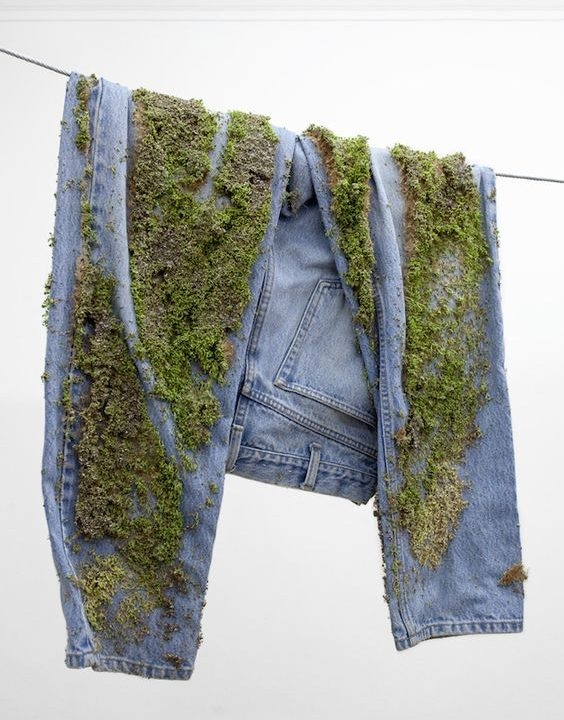 Jeans with green plants growing on it