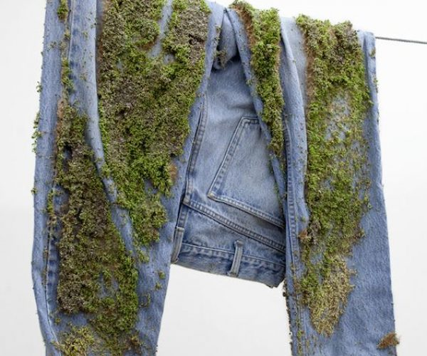 Jeans with moss growing on it